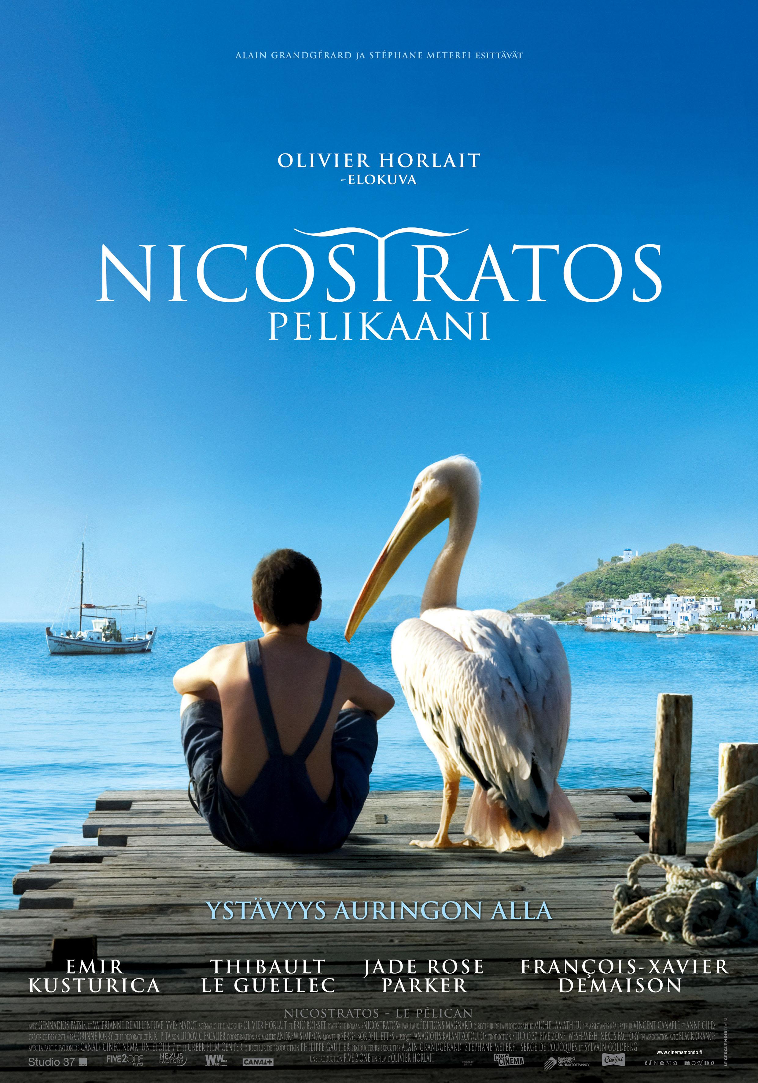 Nicostratos – pelikaani